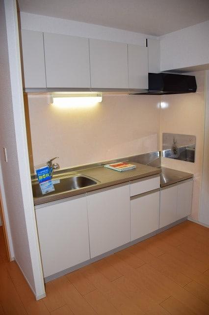 ラフィナート D 02060号室のキッチン