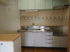 パークヒル参番館 207号室のキッチン