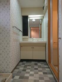 パークヒル参番館 207号室の洗面所