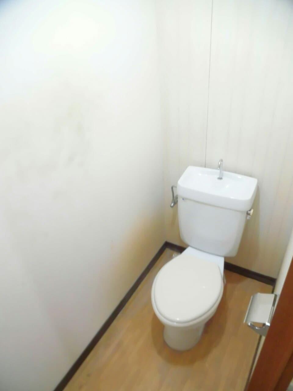 柱アパート 02010号室のトイレ