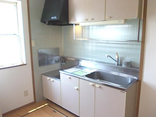 ファインスターハイムA 01010号室の洗面所