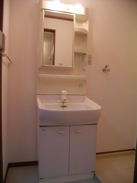 クレストールJ&N 02040号室の洗面所