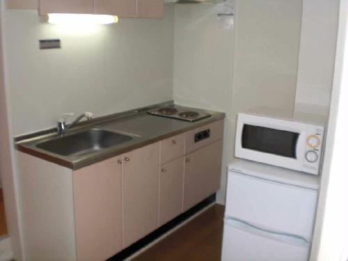 レオパレスYUGAWARA 204号室のキッチン