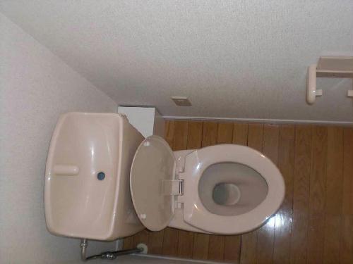 レオパレスYUGAWARA 204号室のトイレ