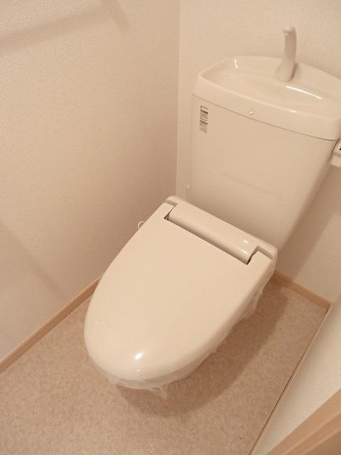 ラ メゾン ゴルディーニⅡ 01030号室のトイレ