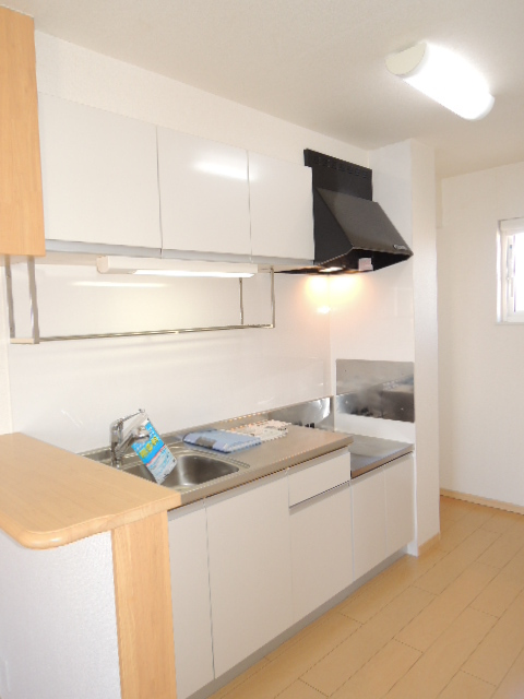 ラフィネT-Ⅲ 02010号室のキッチン