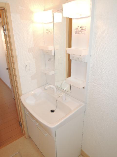 ラフィネT-Ⅲ 02010号室の洗面所