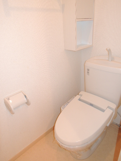 ラフィネT-Ⅲ 02010号室のトイレ
