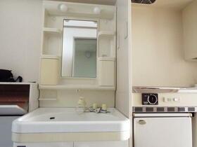 アイリスORIHARAⅡ 113号室の洗面所