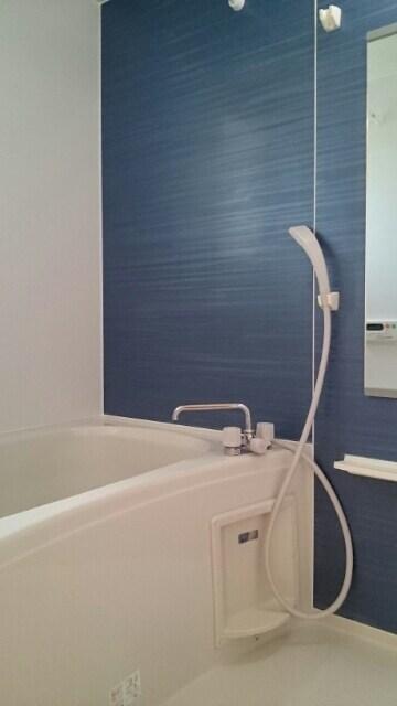 メゾン・グラート 02060号室の風呂