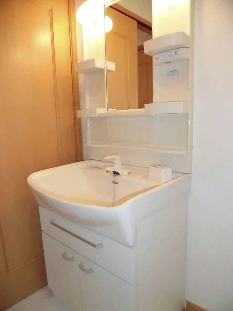 アンヴィラージュ C 01030号室の洗面所