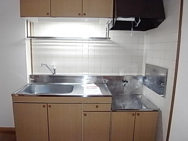 クレストール一ノ坪2番館 01010号室のキッチン
