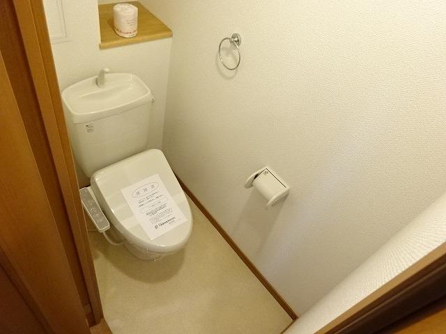 ヴェルソーⅢ番館 01030号室のトイレ