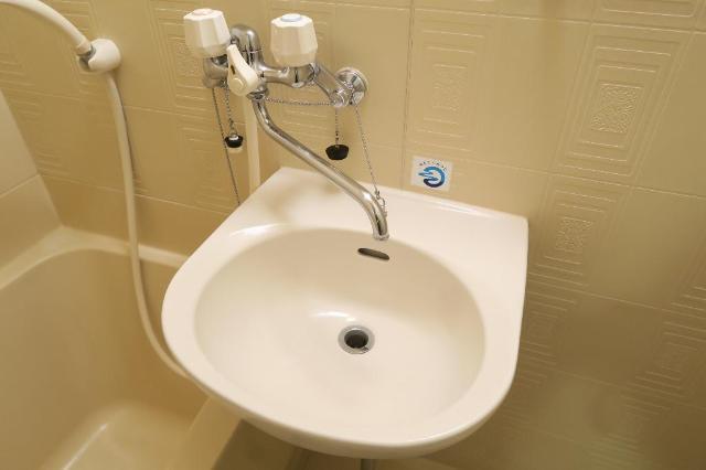 サンヒルズ平和 201号室の洗面所