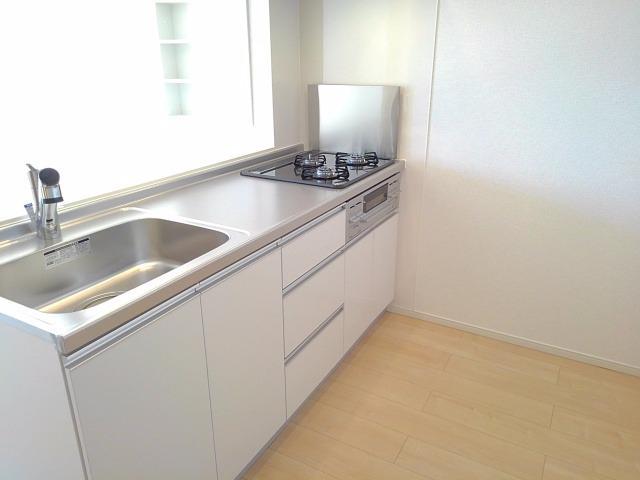 エクセレント・ヴィラ今泉B 02020号室のキッチン