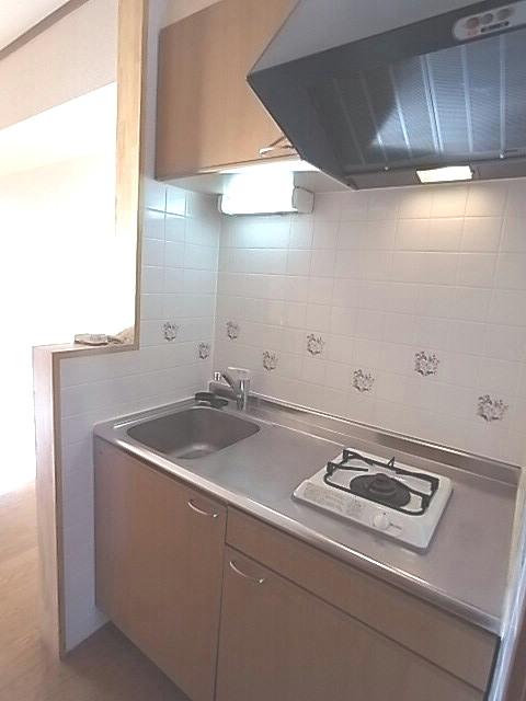 サニーヤード 01030号室のキッチン
