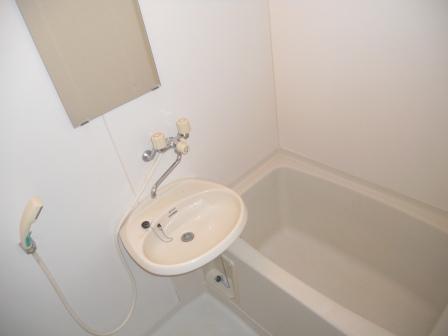 エルディム大竹Ⅱの風呂
