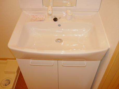 カーサ エスペランサ 02010号室の洗面所