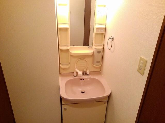 サニ-ヒルA 01040号室の洗面所