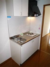 ブリヂネル堀留 502号室のキッチン