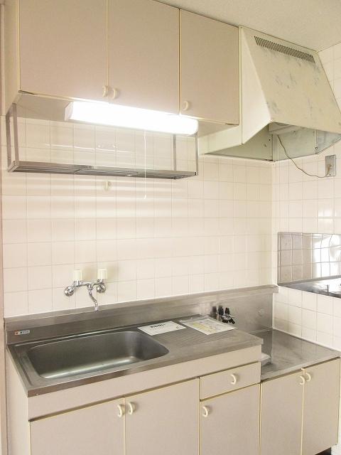 エルディムソウノダイ 02010号室のキッチン