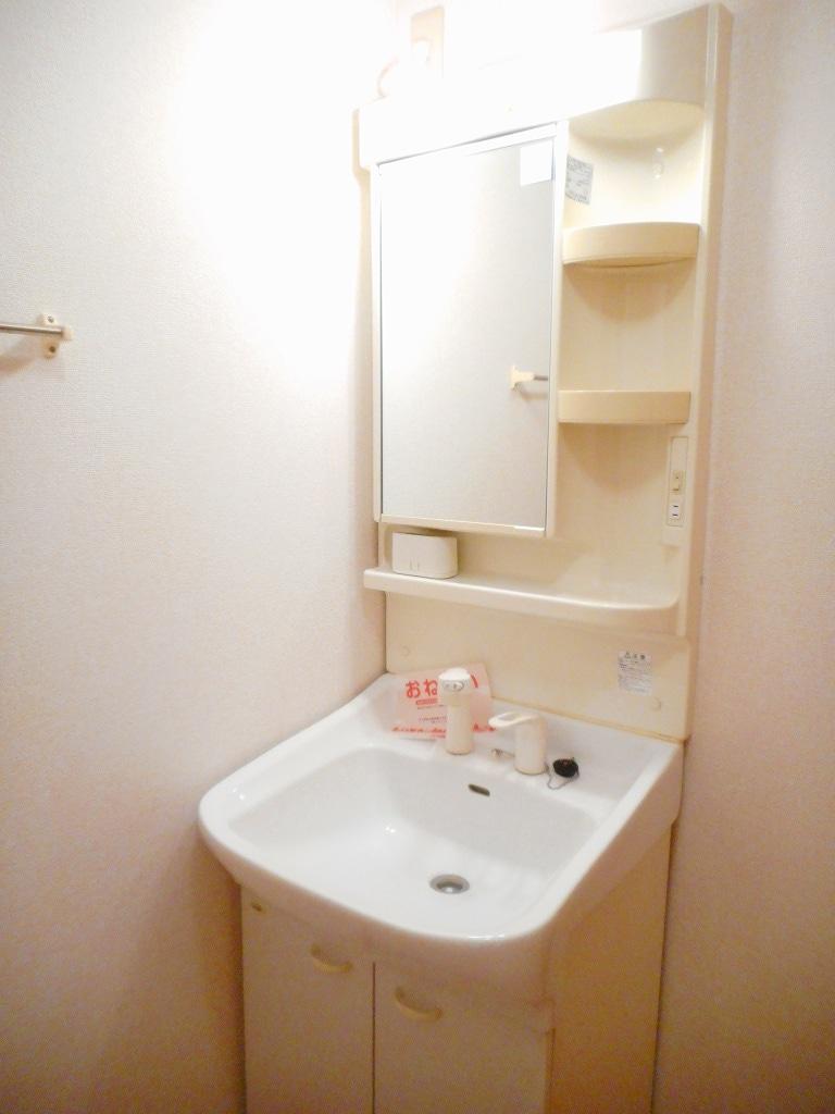 シャローム Ⅱ 01020号室の洗面所