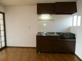 グレーシーフラット吉川 202号室のキッチン