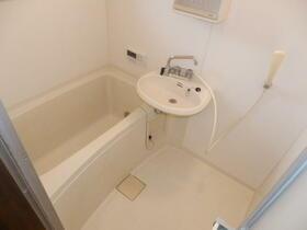 グレーシーフラット吉川 202号室の洗面所
