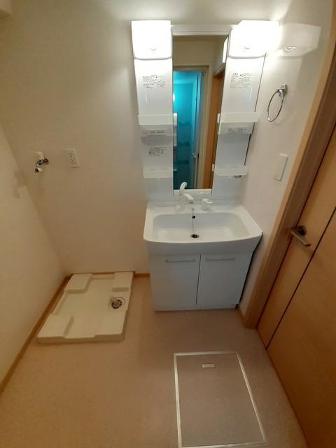 グランシャリオⅡ B 02010号室の洗面所