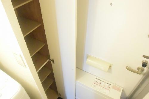 レオパレス南桜塚 204号室の玄関