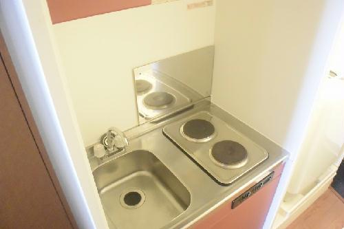 レオパレス南桜塚 204号室のキッチン