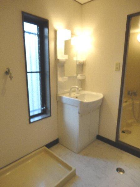 リジョイス桂 105号室の洗面所