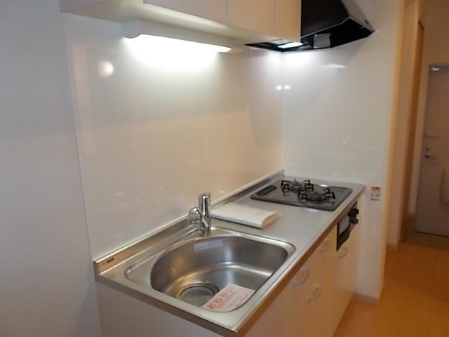プラシード堀B 01010号室のキッチン