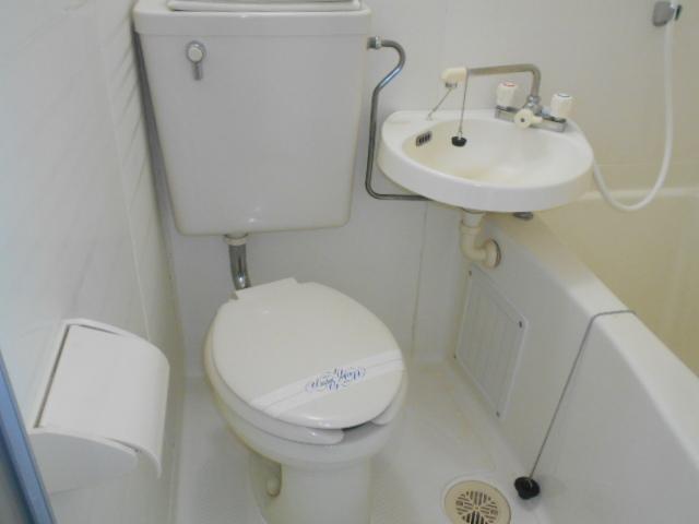 シェール西の京 301号室のトイレ