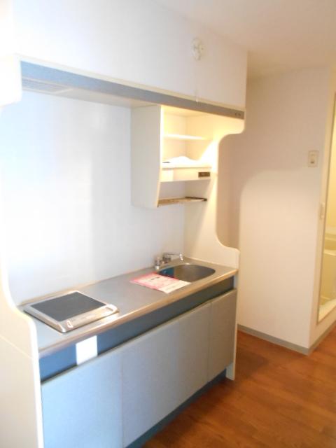 メゾン・ド・パルミエ 306号室のキッチン