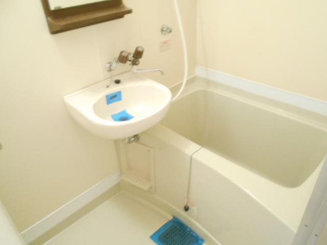 メゾン・ド・パルミエ 306号室の風呂
