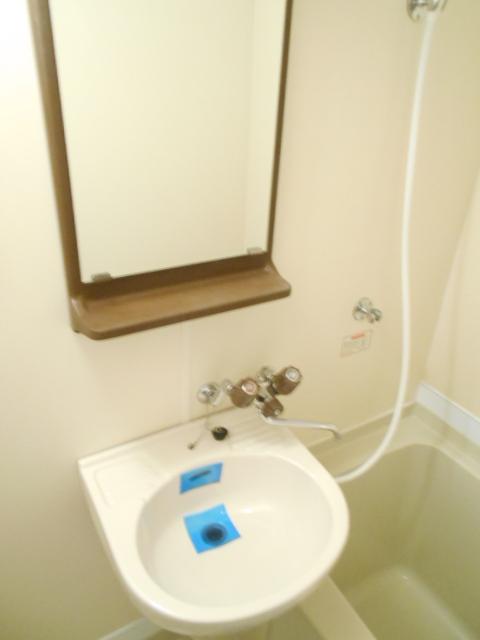 メゾン・ド・パルミエ 306号室の洗面所
