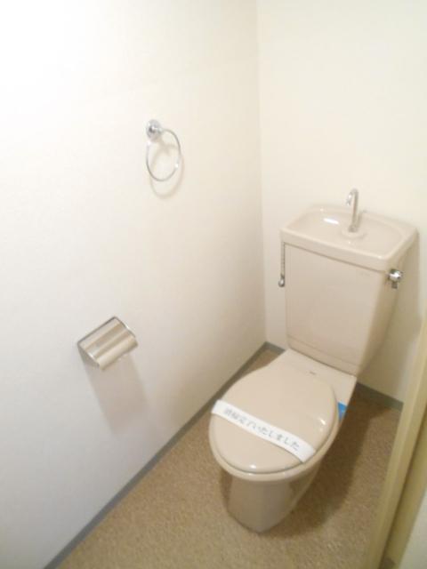 メゾン・ド・パルミエ 306号室のトイレ