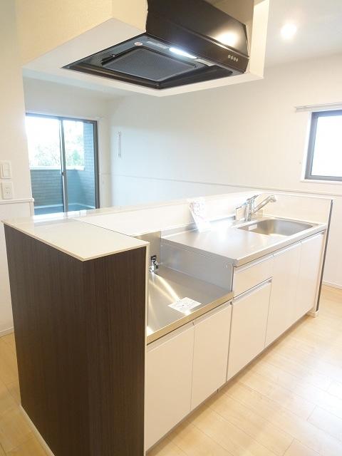 エィチワイティⅡ 02010号室のキッチン