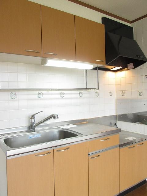 メゾンプラートゥム 01010号室のキッチン