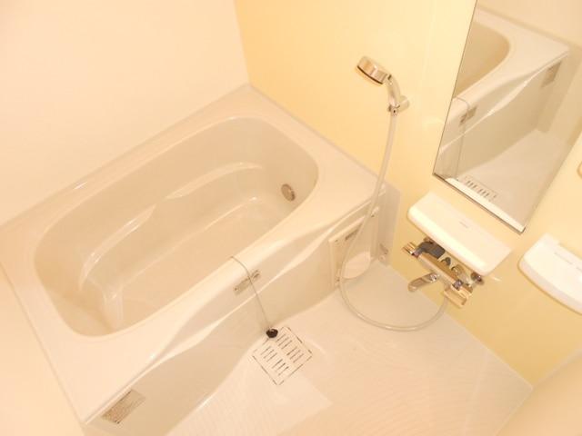 ファミール木幡 01060号室の風呂