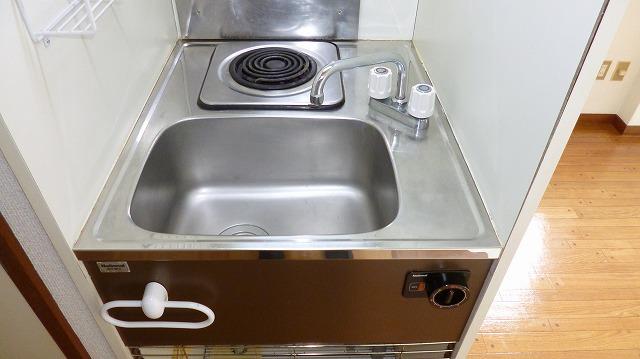 グリーンヒル富塚 201号室のキッチン