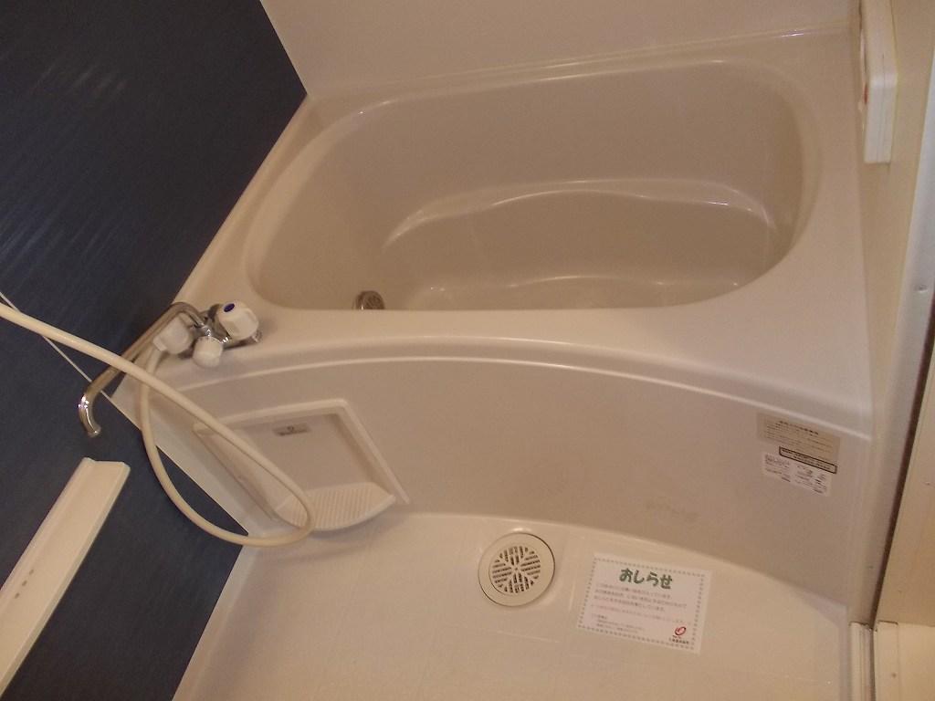 アイリス 02010号室の風呂