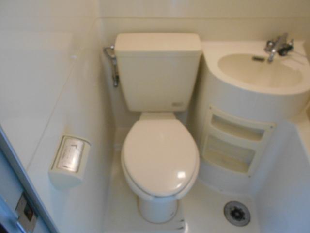 第12長栄セントラルシティーハイツ 105号室のトイレ