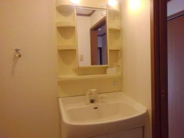 ピュア パレス A 03040号室の洗面所