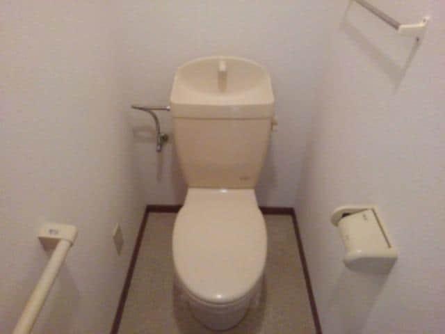 ピュア パレス A 03040号室のトイレ