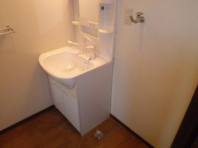 パークハイム 203号室の洗面所
