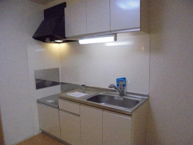 シャン・ノールⅥ 01040号室のキッチン