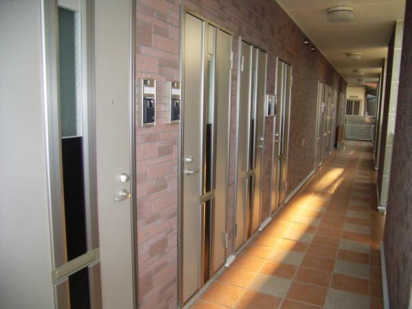 エテルノ中町 01020号室の洗面所