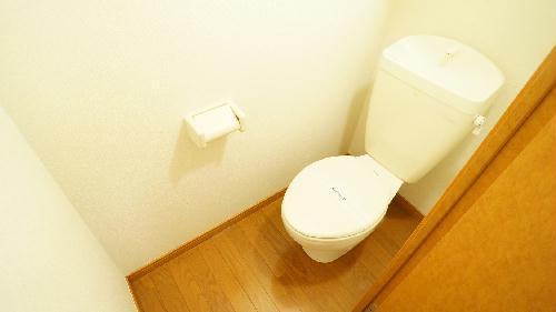 レオパレスフォレスト 206号室のトイレ